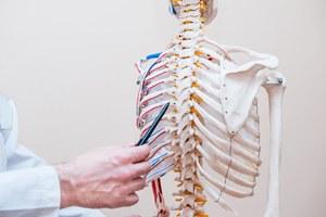 Skelettapparat